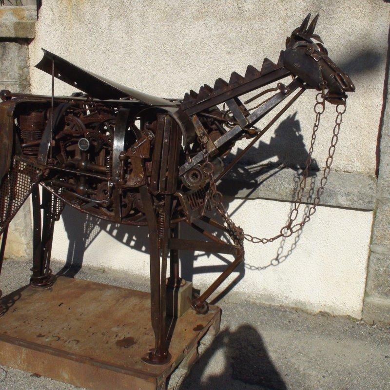 anatomie d'un cheval de course